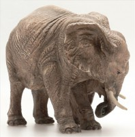 elefanti-5